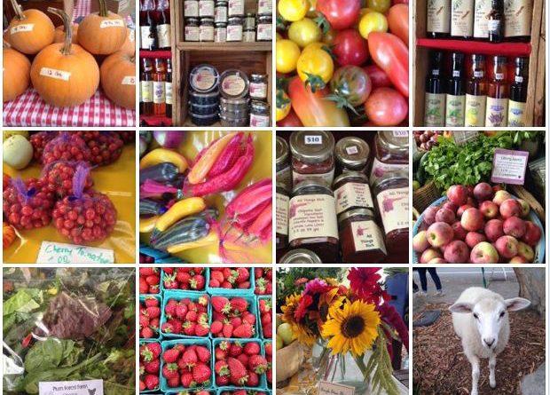 Vashon Island Farmers Market 2016