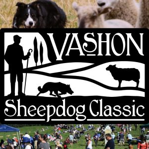 Vashon Island Sheepdog classic 2018