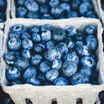 Vashon Fresh - Online Farmers Market - Blueberries